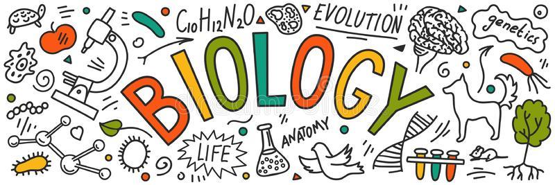 7th Grade Biology